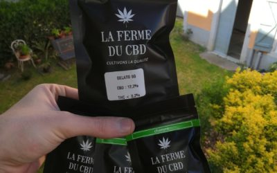 La Ferme du CBD : interview avec un des gros acteurs du marché CBD en France